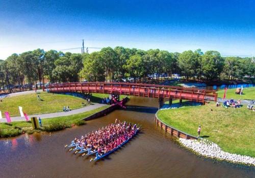 2014 IBCPC Participatory Dragon Boat Festival, Sarasota FL