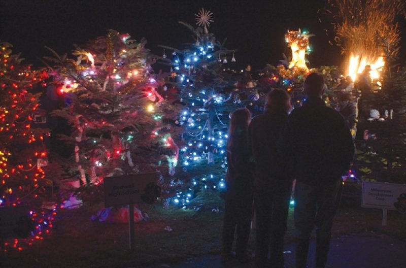 Dundarave's Forest Of Miracles And Holiday Festivities